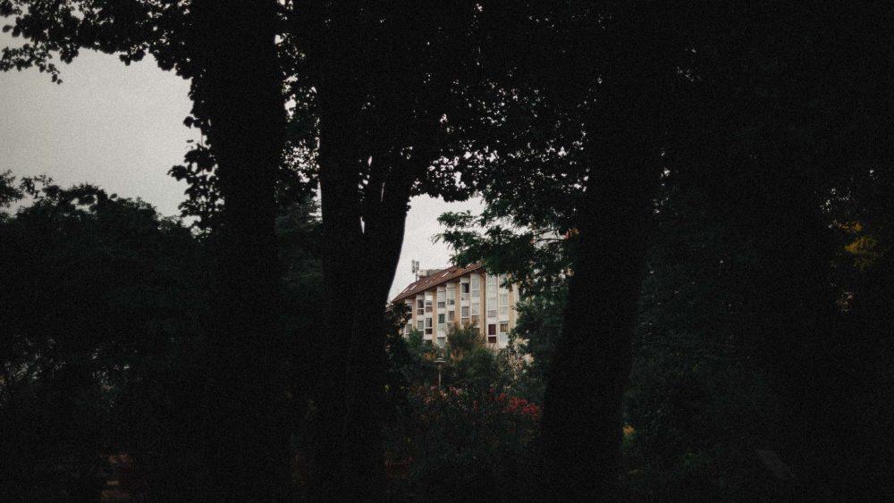 zaiczdomokos.com Zaicz Domokos Zaiczd-budapest-füvészkert-blog-bejegyzés-eltefüvészkert-film-mood-sorozat-42